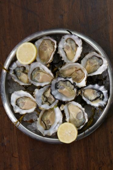 bentley's oyster